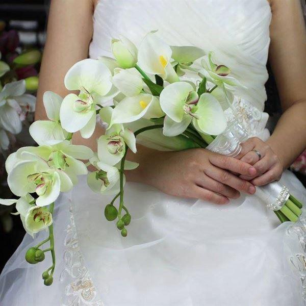 Kết quả hình ảnh cho hoa cưới hoa lan